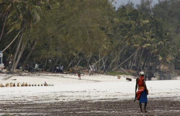 Avoiding the beaten track in Diani Beach, Kenya